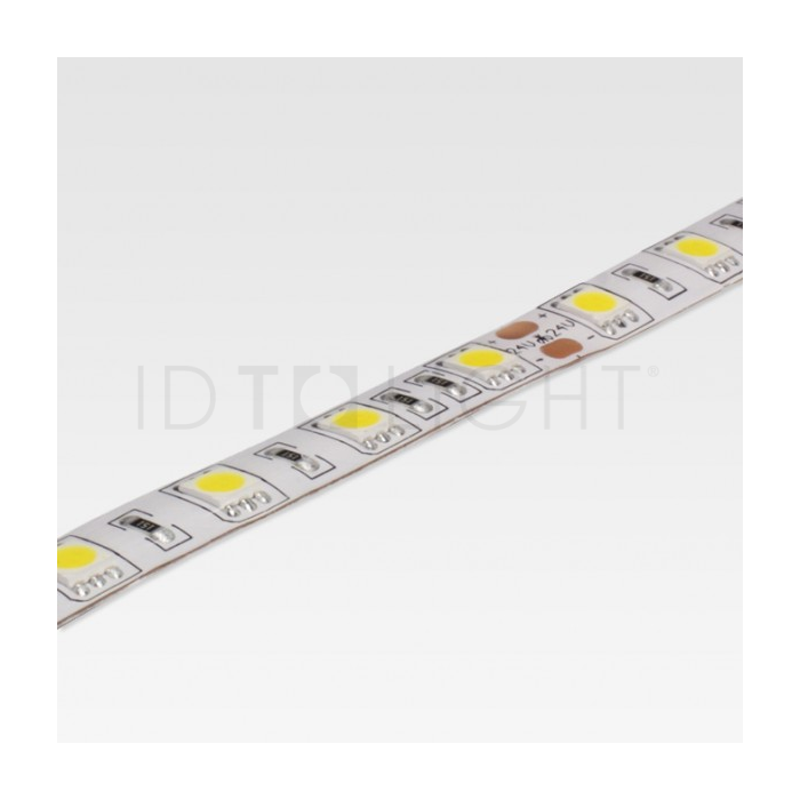 Ruban LED CANCUN IP65 idtolight