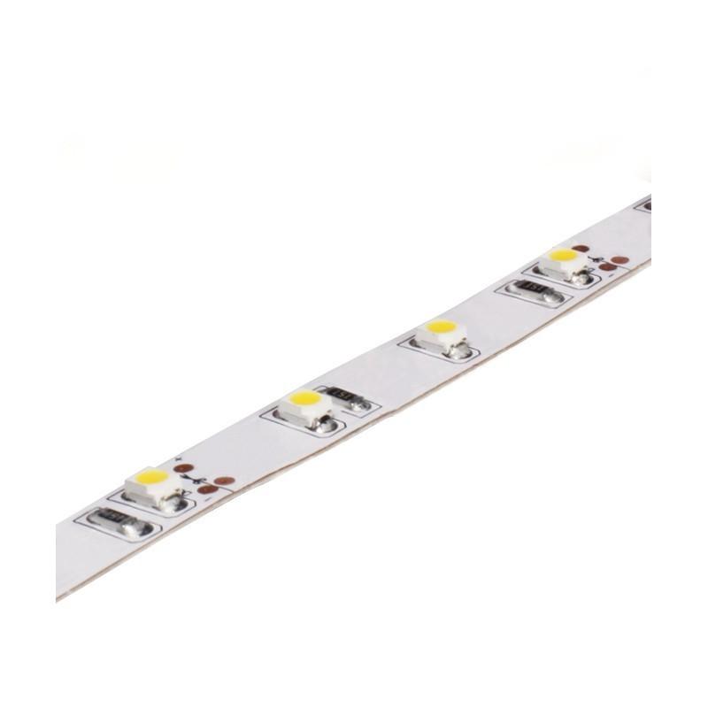 Ruban LED CALI 5m 4,8W/m 24V