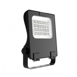Projecteur APO LED 80W lited